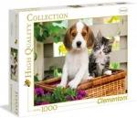 Legpuzzel - 1000 - Hond en kat