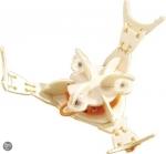 Haba - Bouwpakket krab