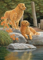Legpuzzel - 1000 - 2 Honden