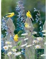 Legpuzzel - 500 - Vogels op een hek