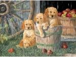 Legpuzzel - 400 - Honden in emmer
