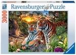 Legpuzzel - 3000 - Verborgen tijgers