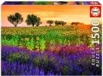 Legpuzzel - 1500 - Zonnebloemen