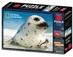 Legpuzzel - 500 - zeehond 3D