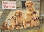 Legpuzzel - Golden puppies - 500 stukjes