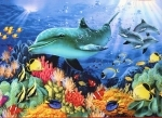 Legpuzzel - 1000 - Dolfijnen avontuur