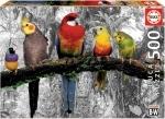 Legpuzzel - 500 - Birds on the jungle
