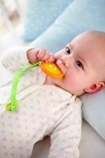 Haba - Bijtspeeltje sinaasappel