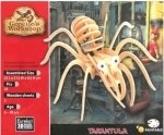 Vogelspin tarantula - Gepettos