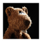 Beasts knuffel - River Rafter