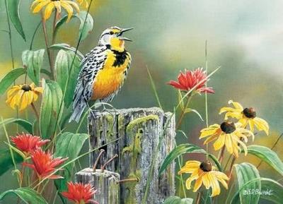 Legpuzzel - 1000 - Vroeg vogeltje