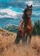 Legpuzzel - 1000 - Paard freedom
