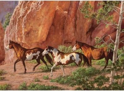 Legpuzzel - 1000 - Paarden in klif