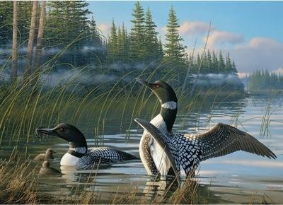 Legpuzzel - 1000 - Natuur met vogels