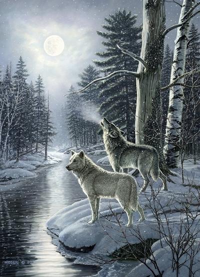 Legpuzzel - 1000 - Wolven bij maanlicht