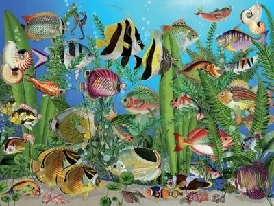 Legpuzzel - 275 - Vissen